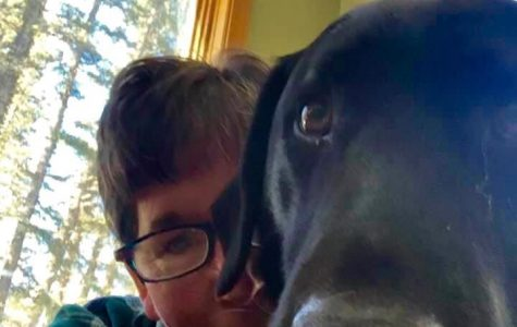 Kelly Boykin and her dog Coop teaching online courses from her home in Rico, Colo.
